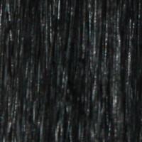 Couleur cheveux 1 Jet Black