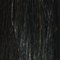 Couleur cheveux 1B Natural Black