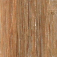 Couleur cheveux 8 Light Brown