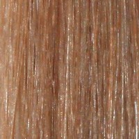 Couleur cheveux 12 Light Golden Brown