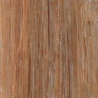 Couleur cheveux 16 Medium Blonde
