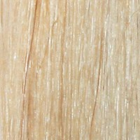 Couleur cheveux 22 Golden Blonde