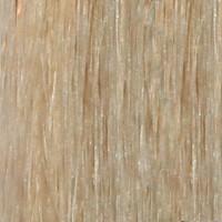 Couleur cheveux 613