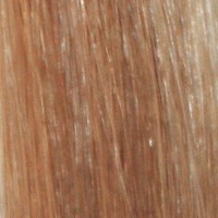 Couleur cheveux 10 Medium Ash Brown